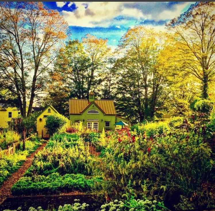 Trout Lily Farm