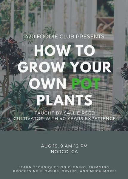 Learn to Grow Your Own Pot Plants!
