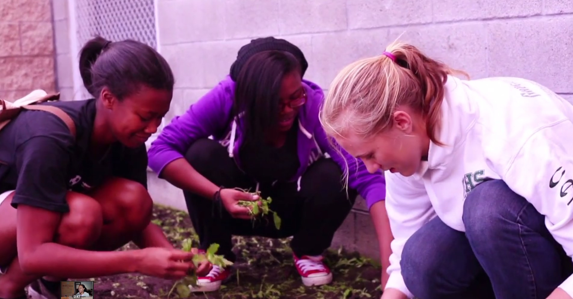 FFSC gardening