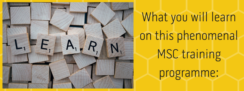 What you will learn on this phenomenal MSC training programme:
