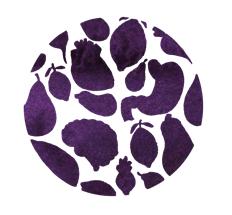 Purple FBNCC logo