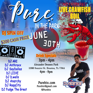 Pure In The Park Event flyer