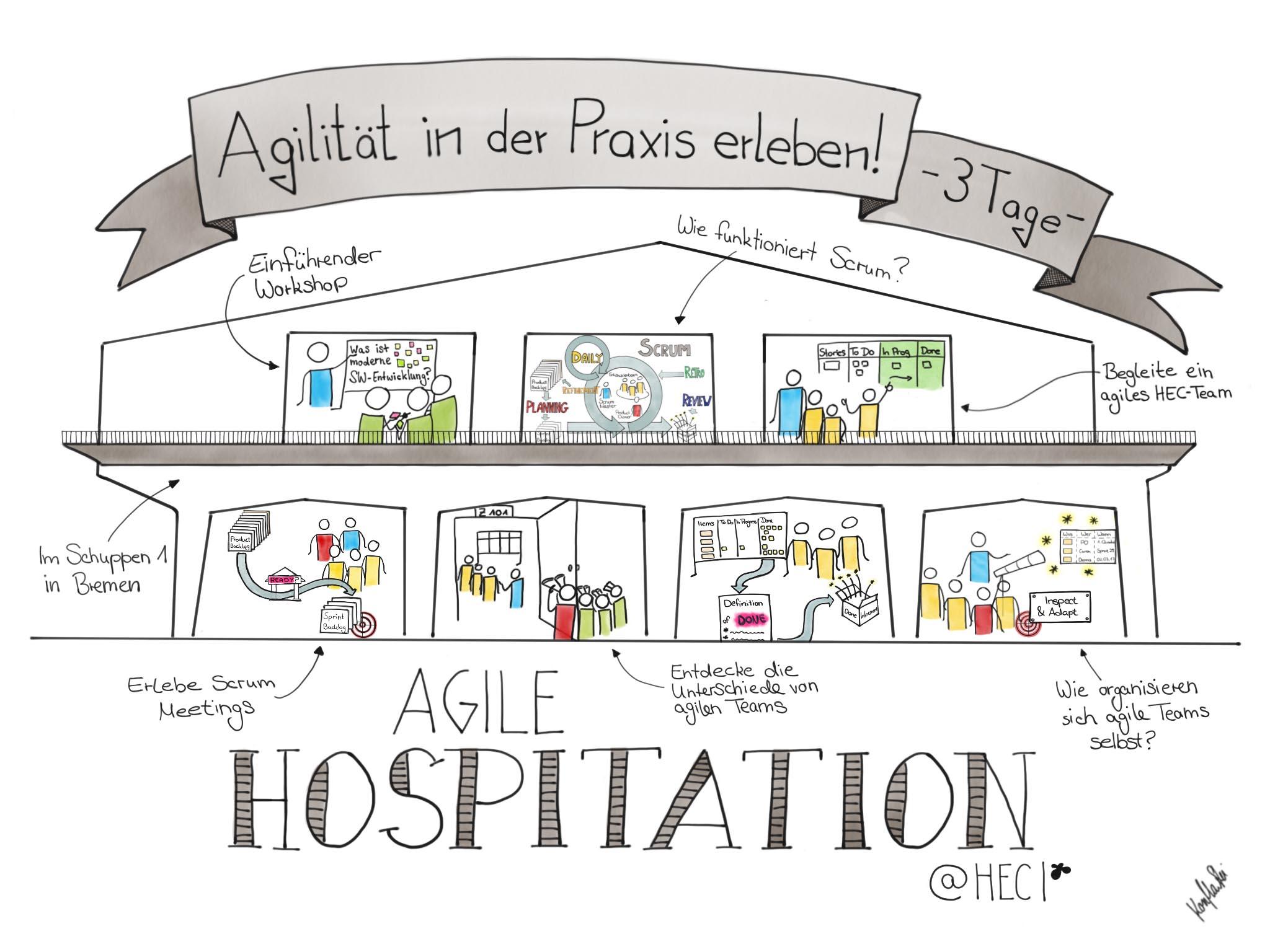 Agile Hospitation