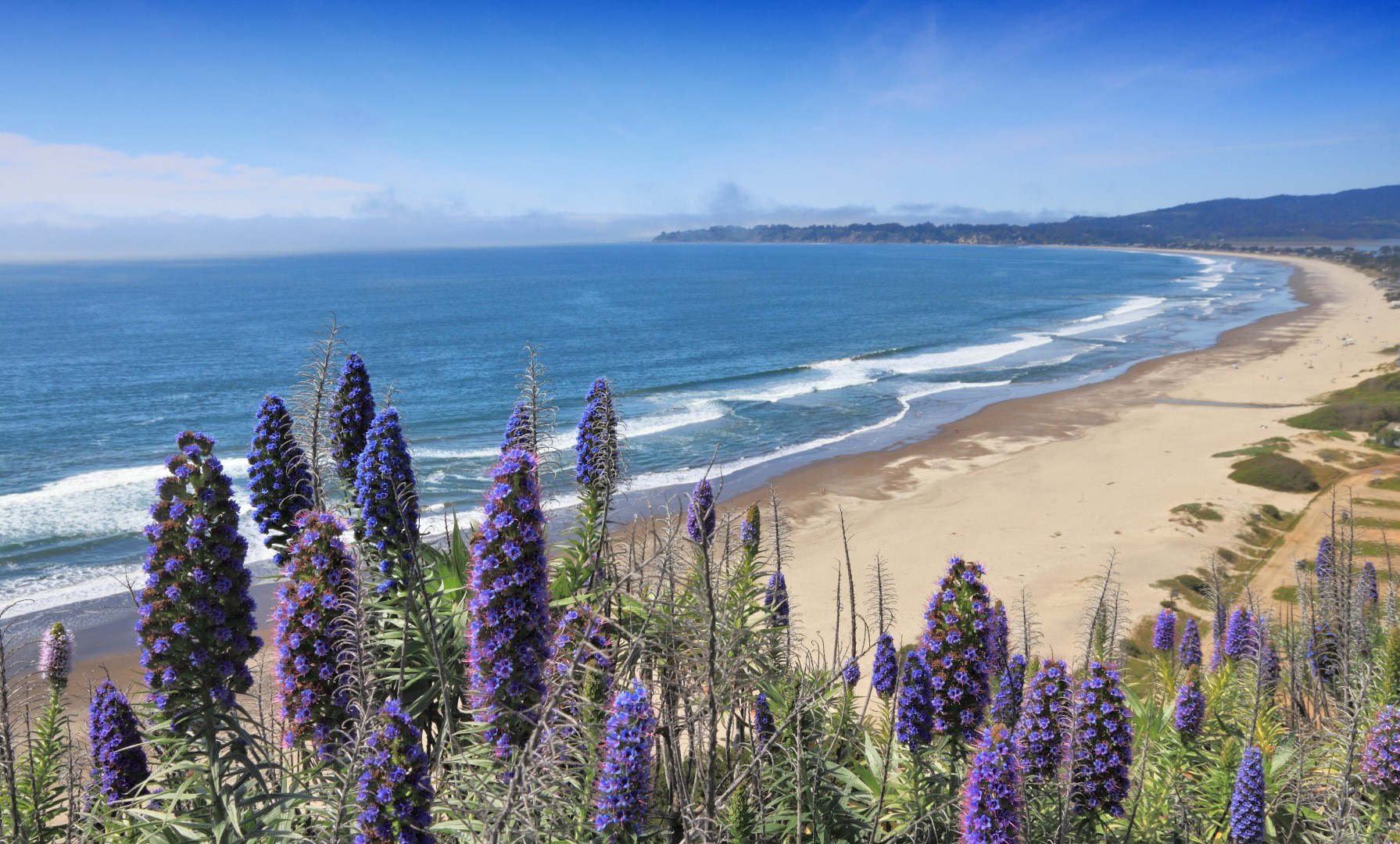 Stinson Beach Viewpoint