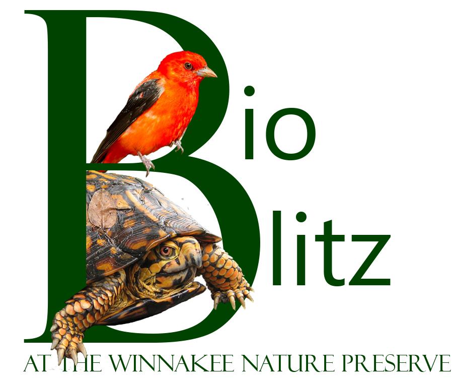 WLT BioBlitz 2017