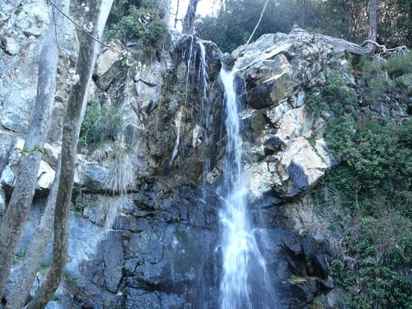 Caledonia Waterfalls trail