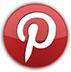 Pinterest.com/SalgiFoundation