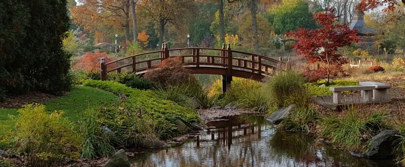 Wellfield Botanical Gardens