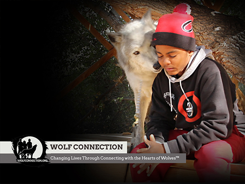 Wolf and Boy