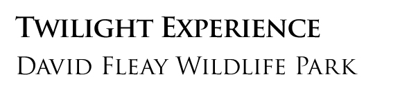 Twilight Experience, David Fleay Wildlife Park