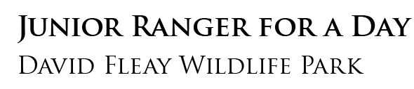 Junior Ranger for a Day Header