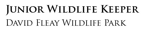 Junior Wildlife Keeper