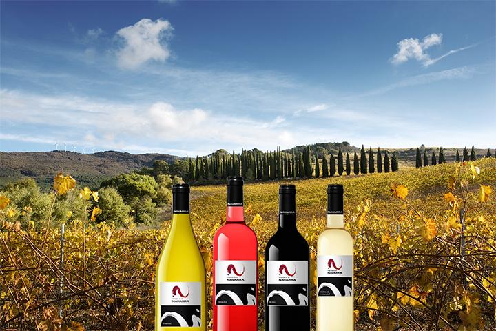 Navarra vineyards and bottles of Wines of Navarra