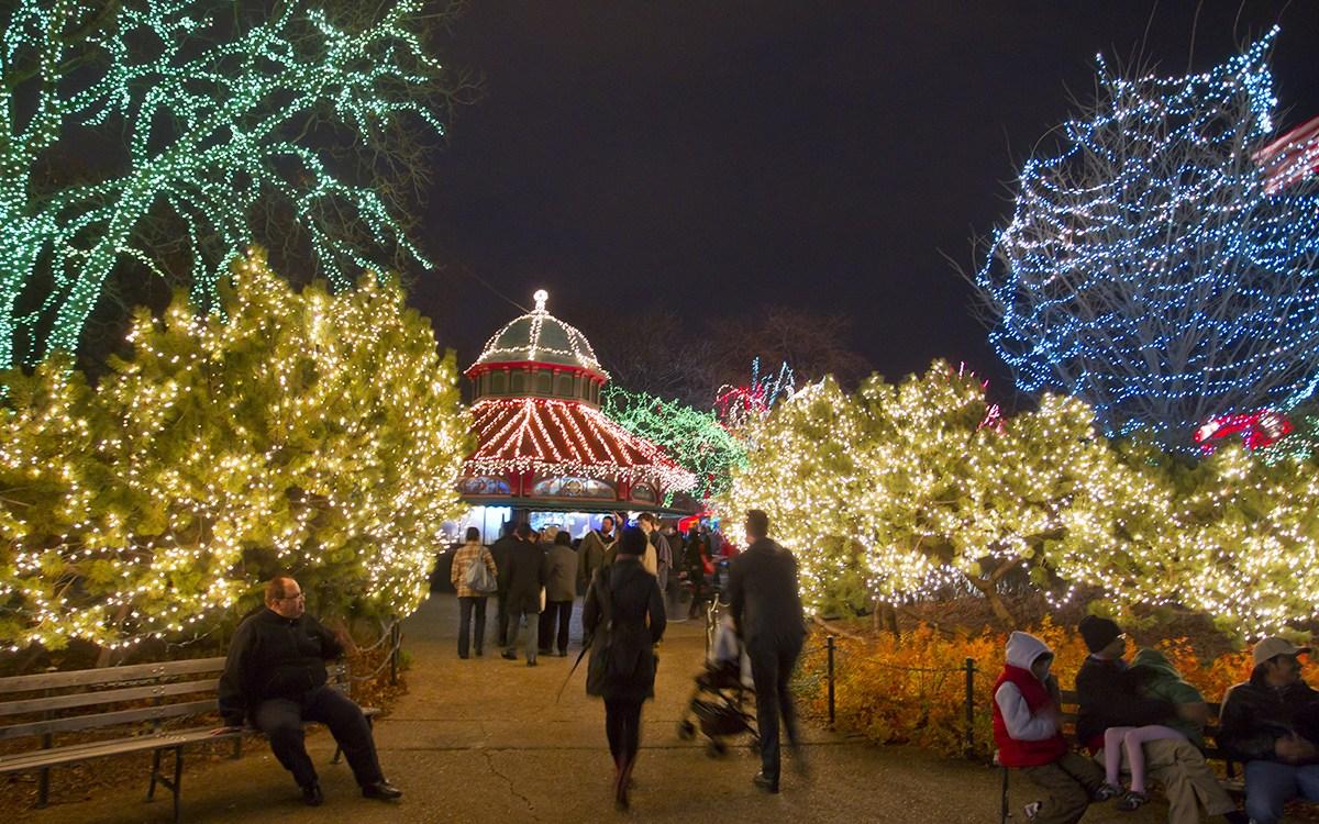 Chicago Christmas Tree Lighting 2019.Byob Party Bus Holiday Lights Tour 2019 Season Pre Sale