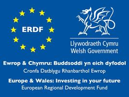 ERDF Logo image