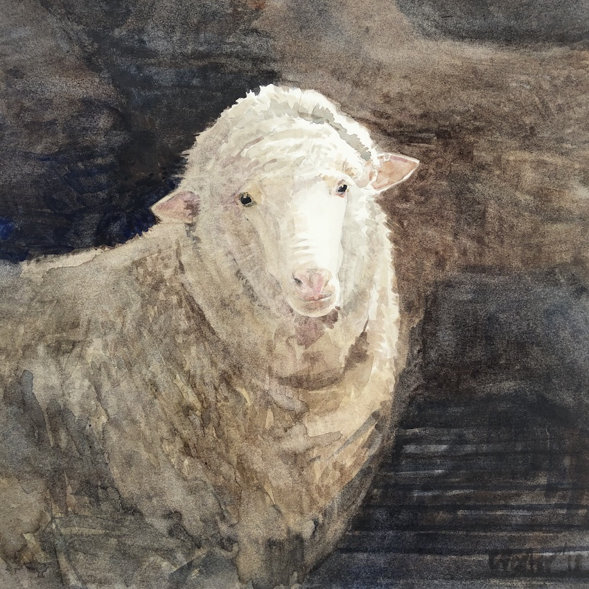 A painting by Christine Porter showing the head of a young ewe standing in a dark shed.