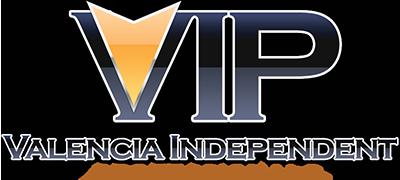 VIP Network Group