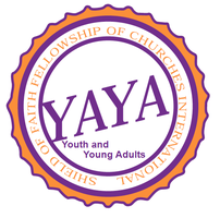 YAYA Convention 2013