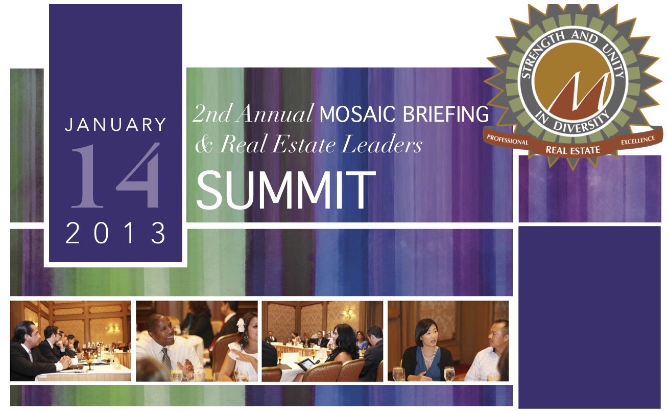 2013 Mosaic Briefing