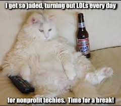 Drunk Cat and LOL's for Nonprofit Techies