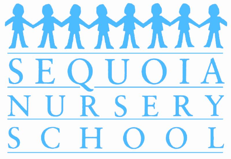 SNS Logo Blue
