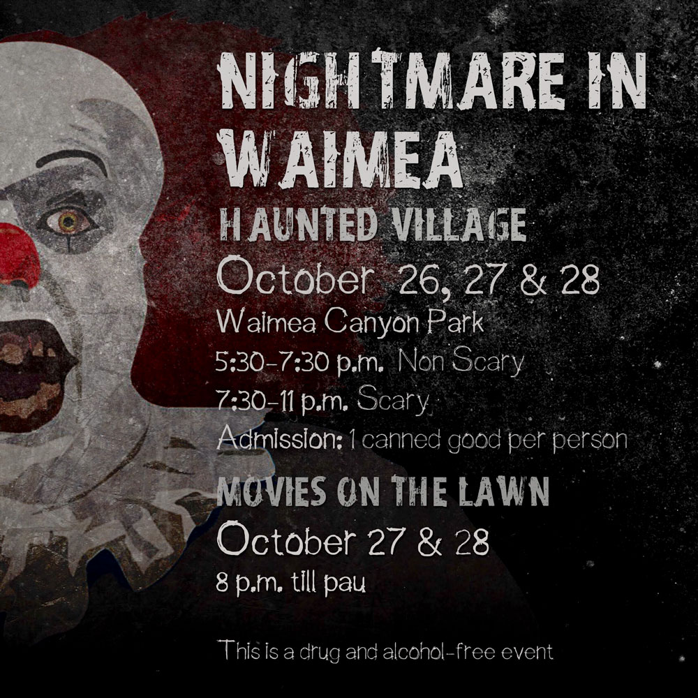 Nightmare in Waimea flyer