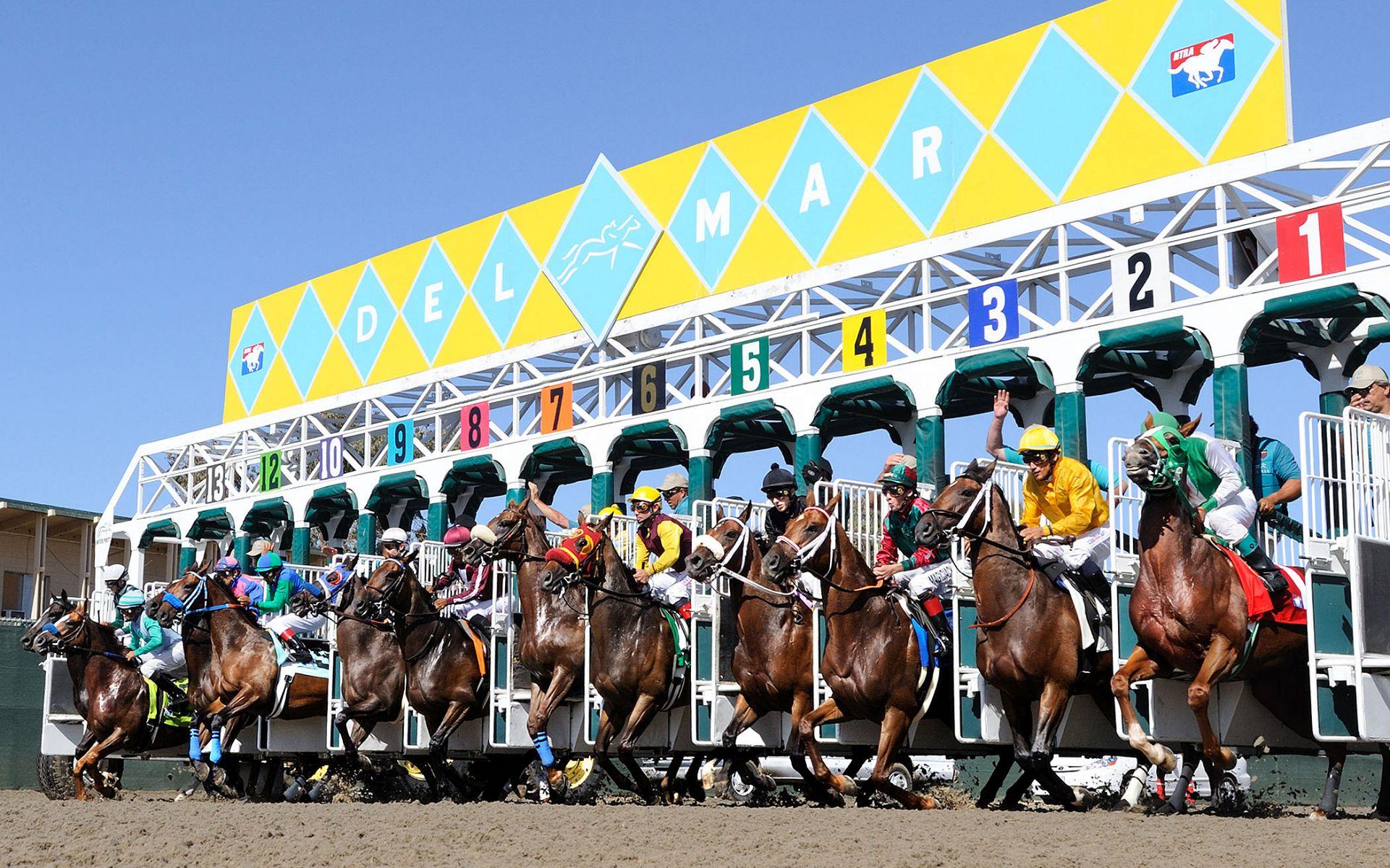 Horses Leaving the Gate