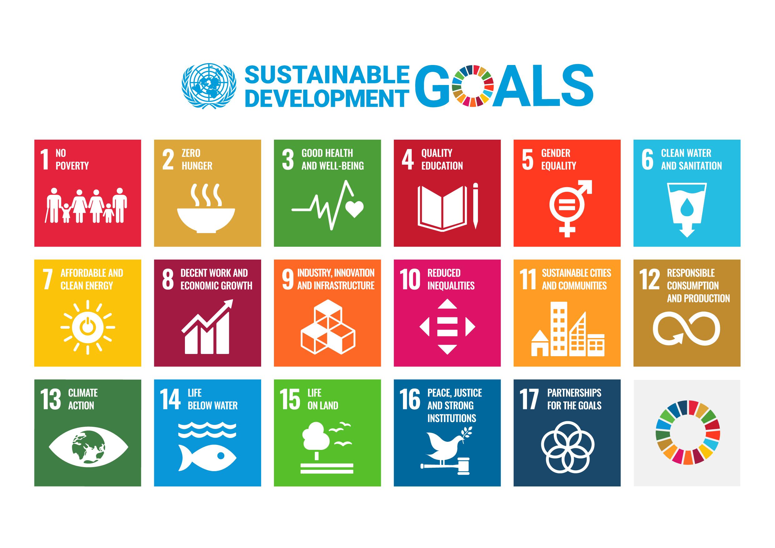 UN Sustainable Development Goals Poster