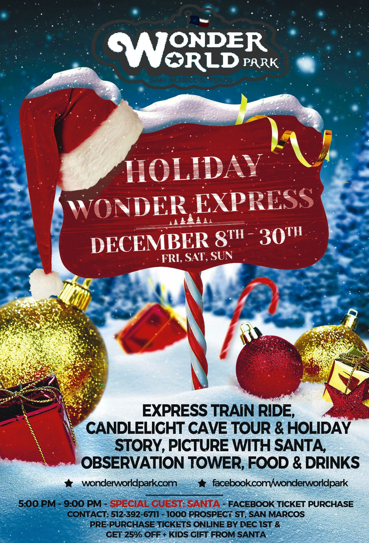 wonder world holiday event flyer 2017