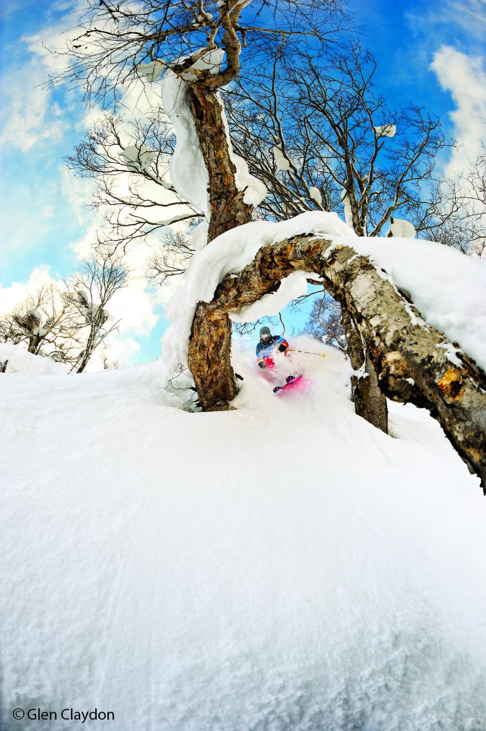Tatsuya Tayagaki tree skiing in Hokkaido, Japan, for Flow State