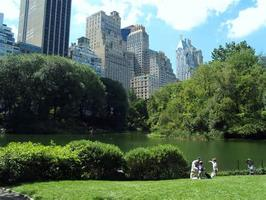 Yoga and Pilates Classes in the Central park