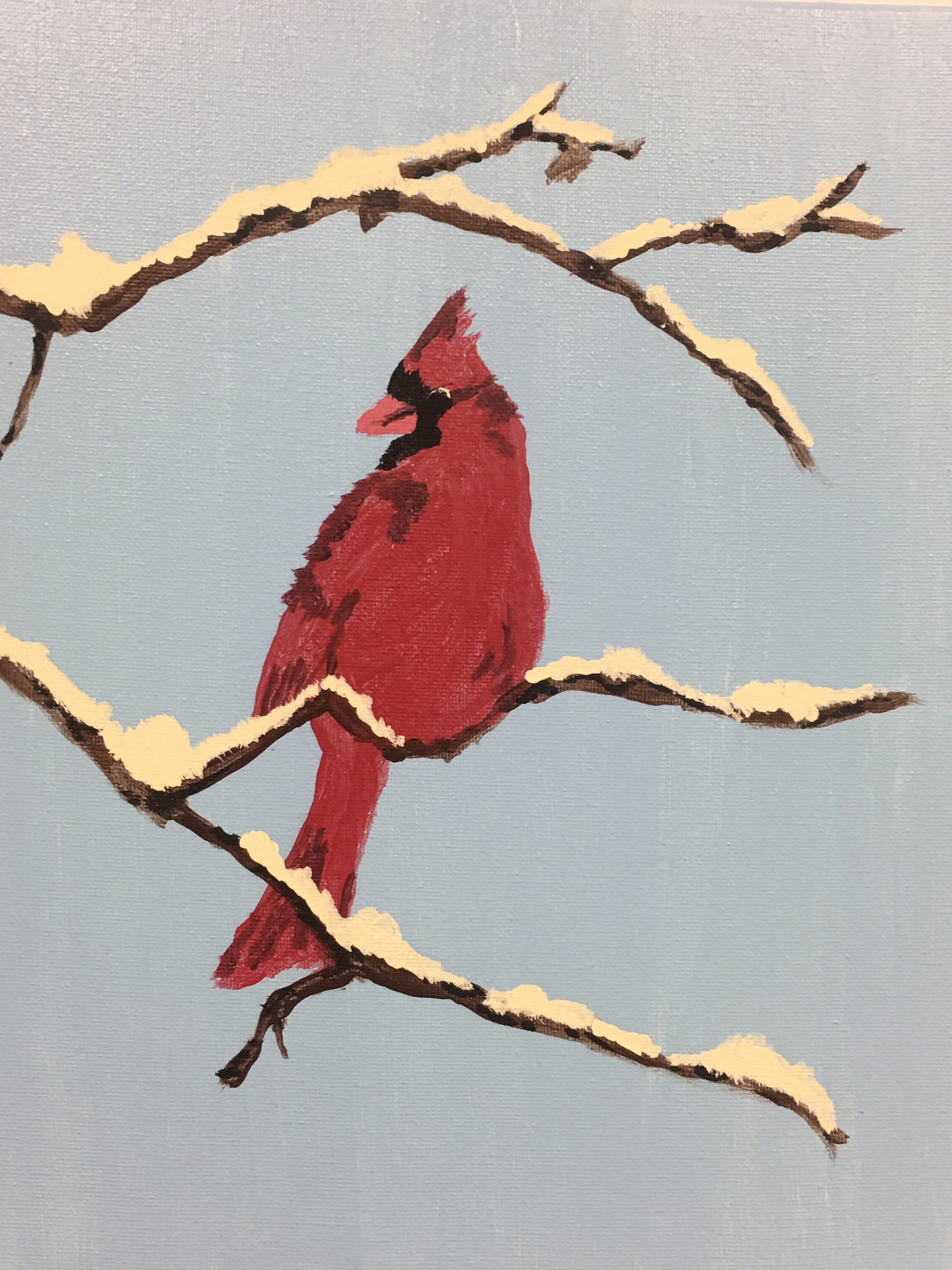 Winter Cardinal (Picture that will be painted)