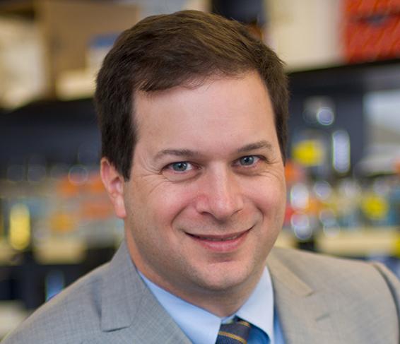 Dr. Andrew J. Wagner