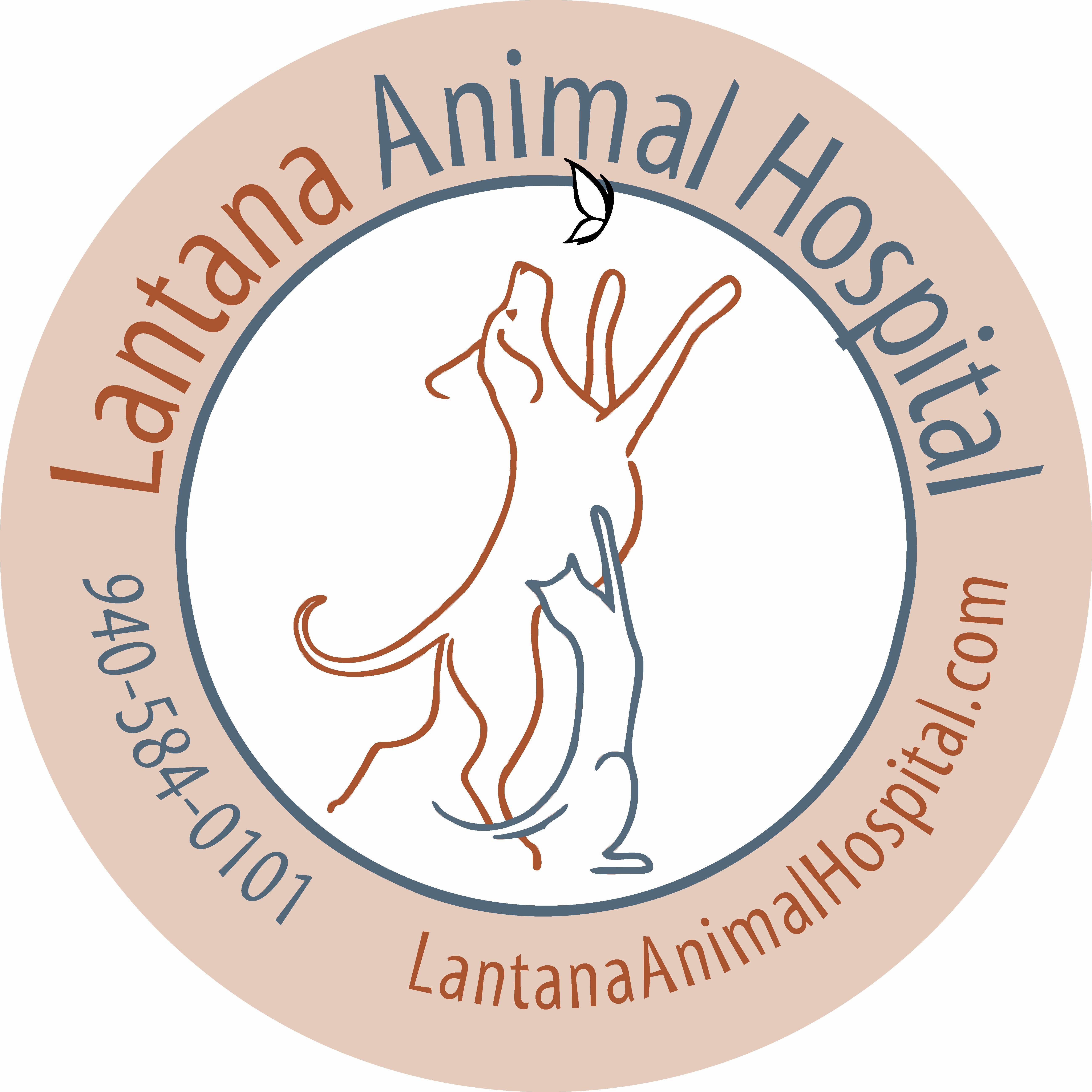 Lantana Animal Hospital