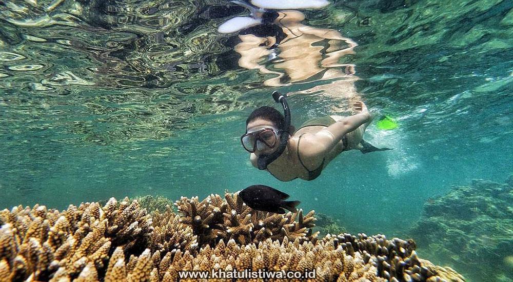 aktivitas snorekeling di pulau tidung