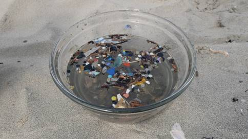 Far more microplastics were found than expected
