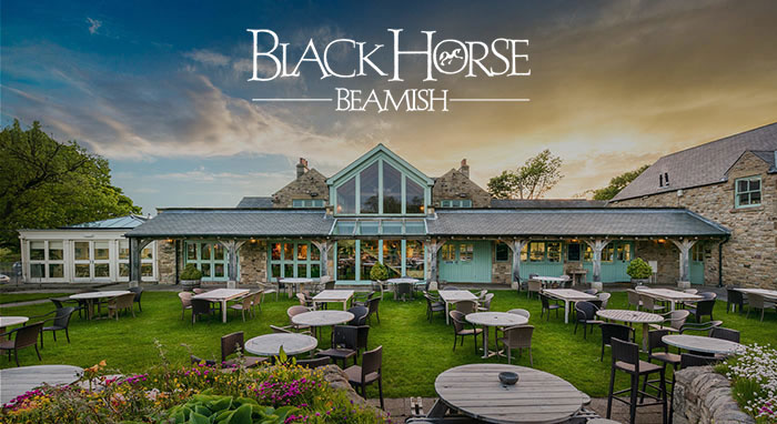 Black Horse Beamish
