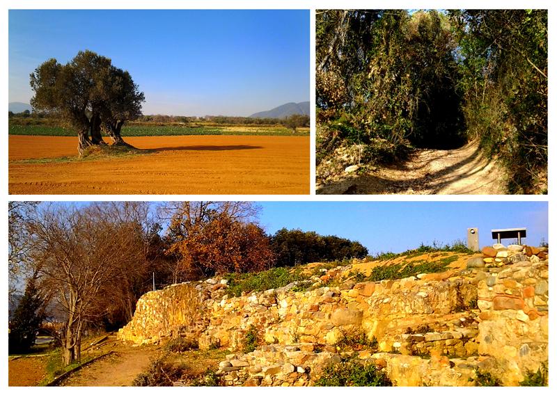 ASB Hike: Villa Romana de Can Terres