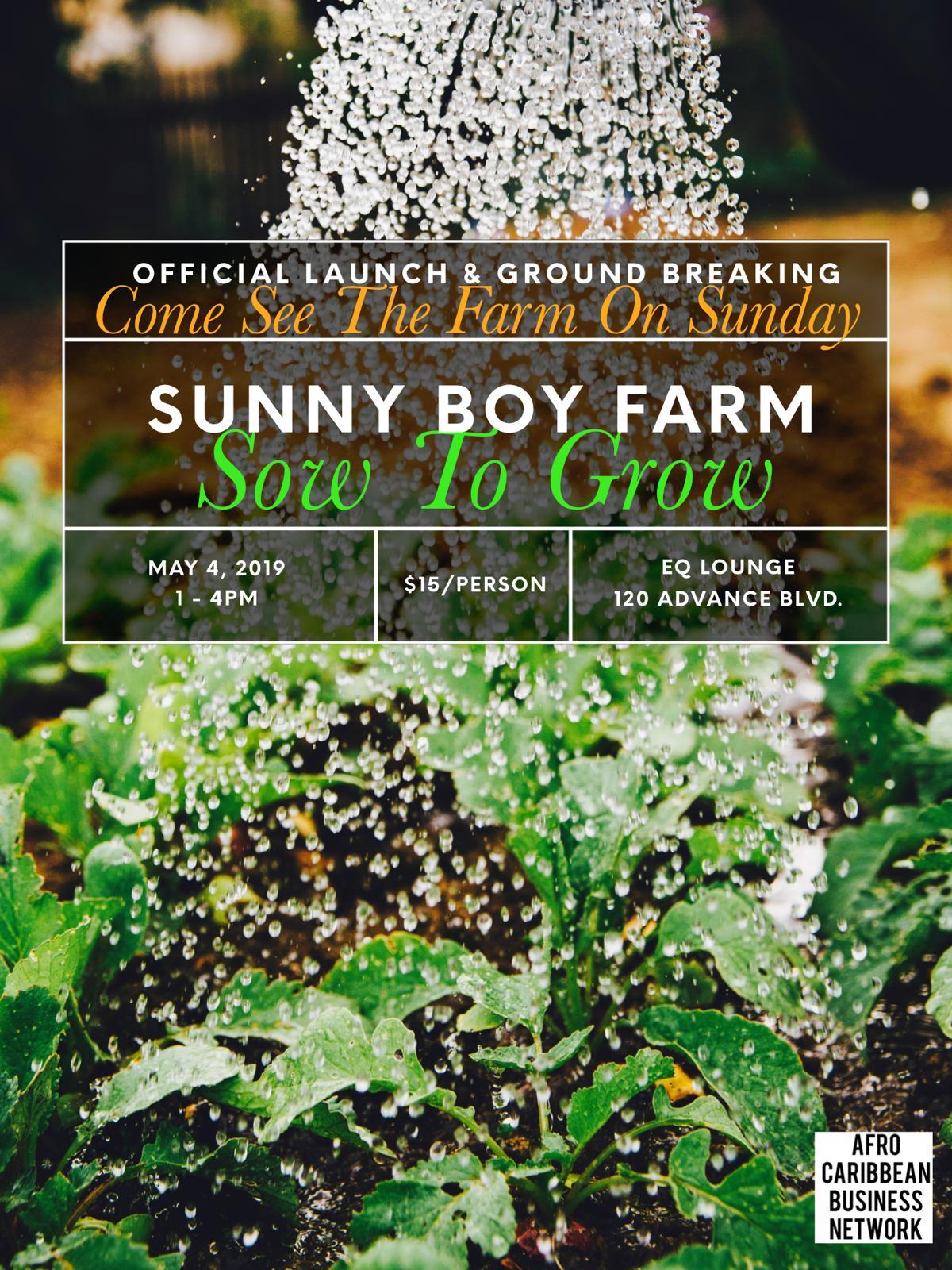 Sunny Boy Farm Launch Invitation