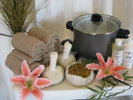 Thai Hot Stem Massage - Barrie - May 13 &14, 2012