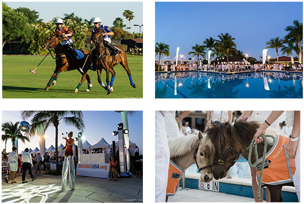 Sunset Polo & White Party Collage
