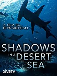Shadows in a Desert Sea Cover