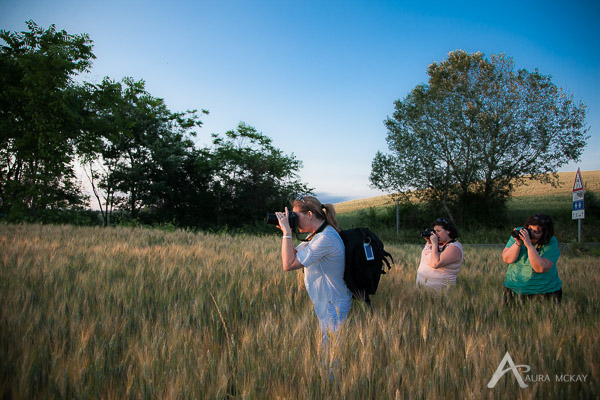 Photographers in a barley field in Italy on tour with Aura McKay and Max Brunelli