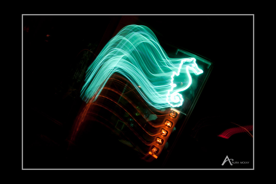 Night photography reverse light paint with seahorse sign by Aura McKay