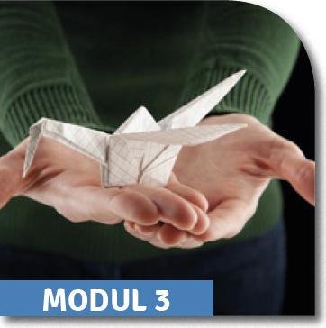 Erfolg mit Herz Modul 3: Sinn