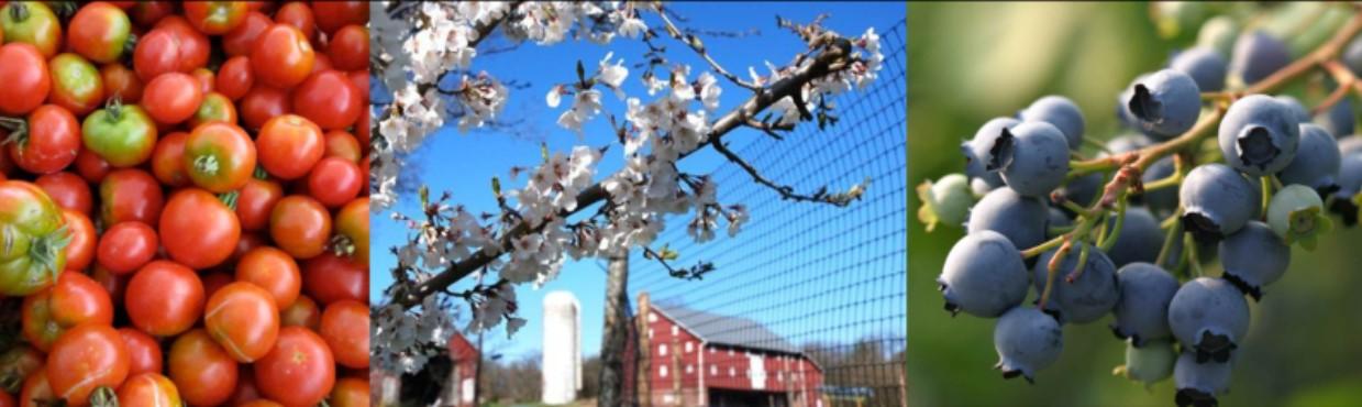 3 farm pictures