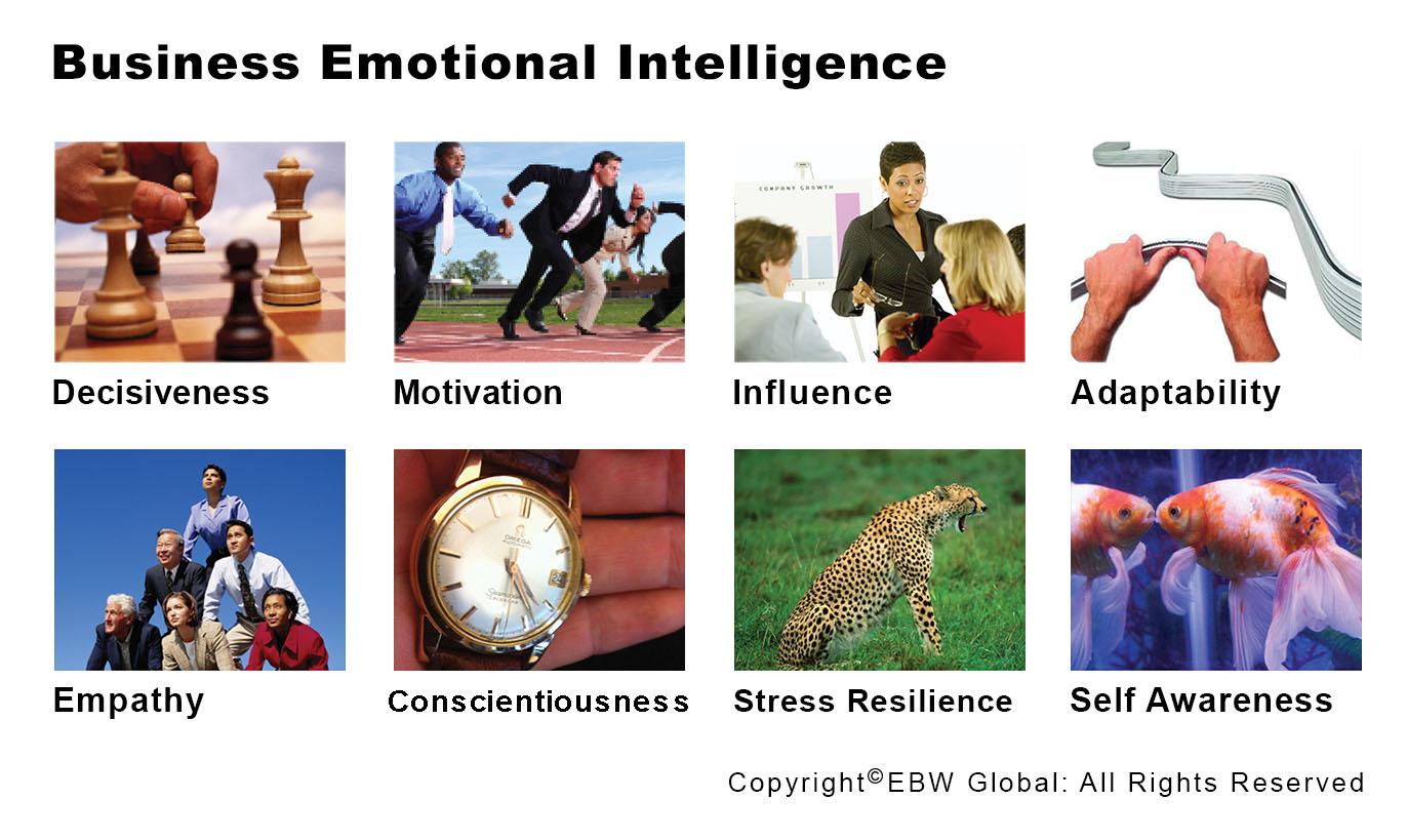 EBW Business Emotional Intelligence
