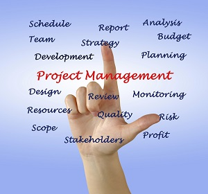 proj mgmt aspects