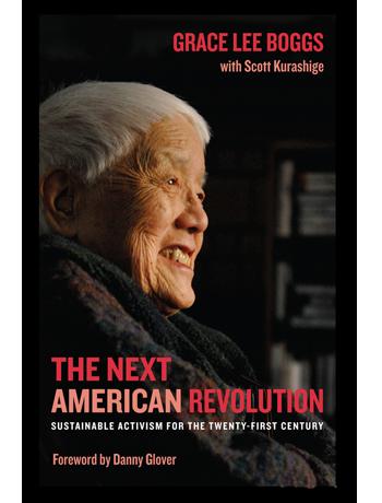 The Next American Revolution Book Cover