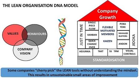 CLS LEAN DNA